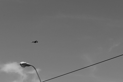 fly in the sky (birds and a wire)30.07.2016